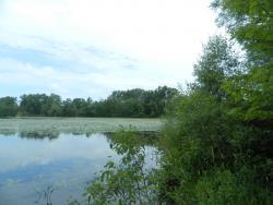 Pleasant Lake Michigan
